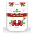 Dried Cranberries 170g